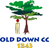 Old Down Cricket Club
